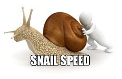 17-04-17 Blog 24 snail speed MEME